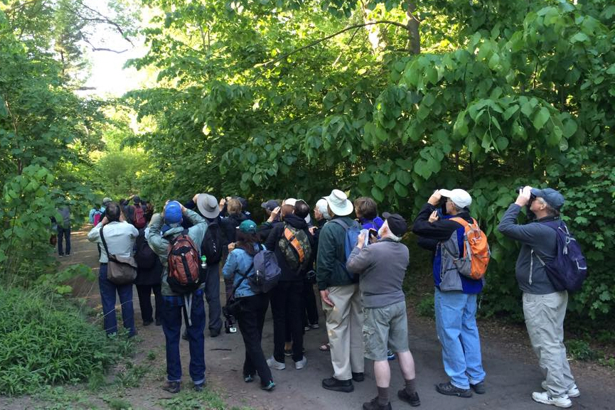 Prospect Park Bird walks to resume this September!