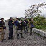 Announcing our 2019 World Migratory Bird Day Birdathon